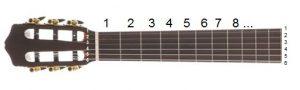 دسته گیتار 2