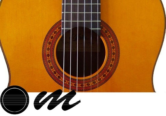 گیتار آریا AK80 4