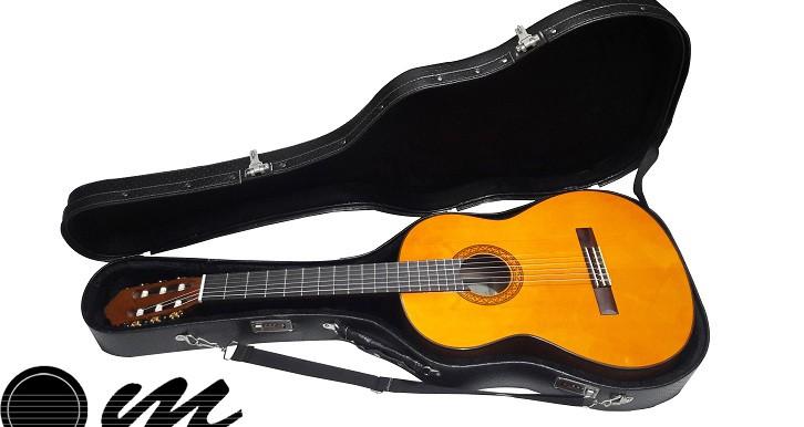 هاردکیس گیتار 2