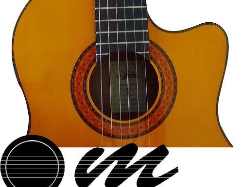 گیتار آریا AK80 پیکاپدار - 3