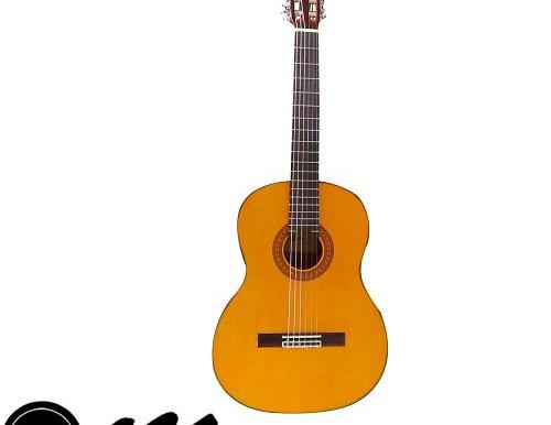 گیتار آریا AK80
